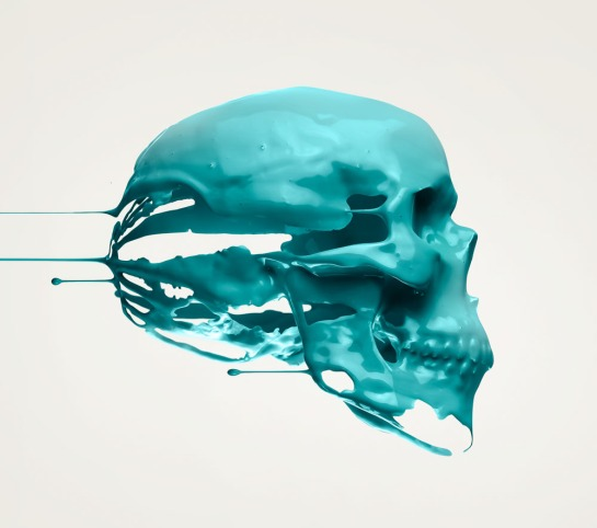 Anatomy 3b